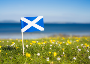 scotland-recycling-consistency